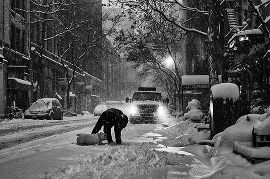 Snowstorm in NYC, 2016